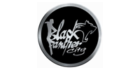 BLACK PANTHER CITY
